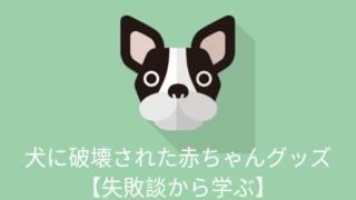 犬に破壊された赤ちゃんグッズ